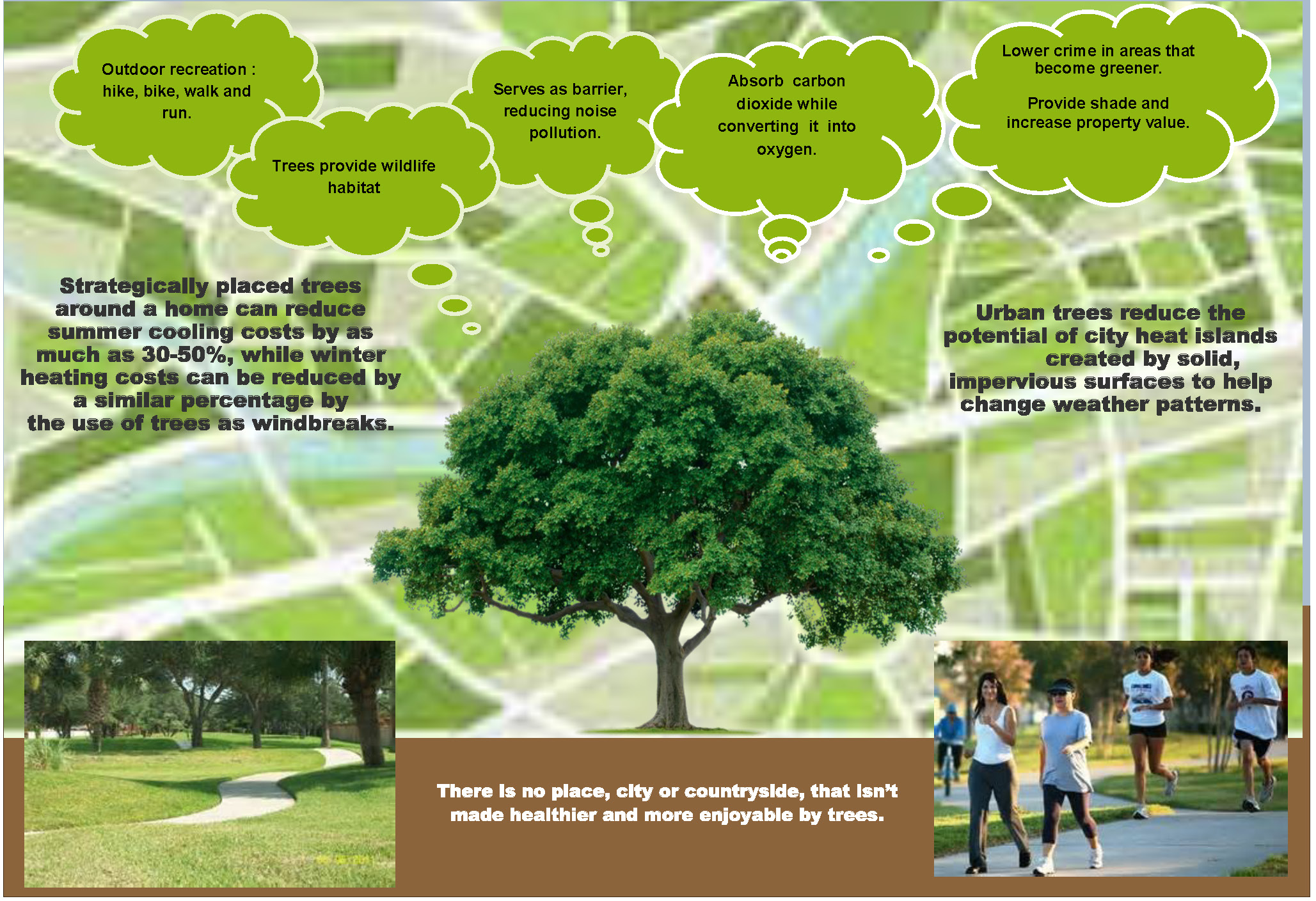The Importance of trees Brochure Updated Page 1